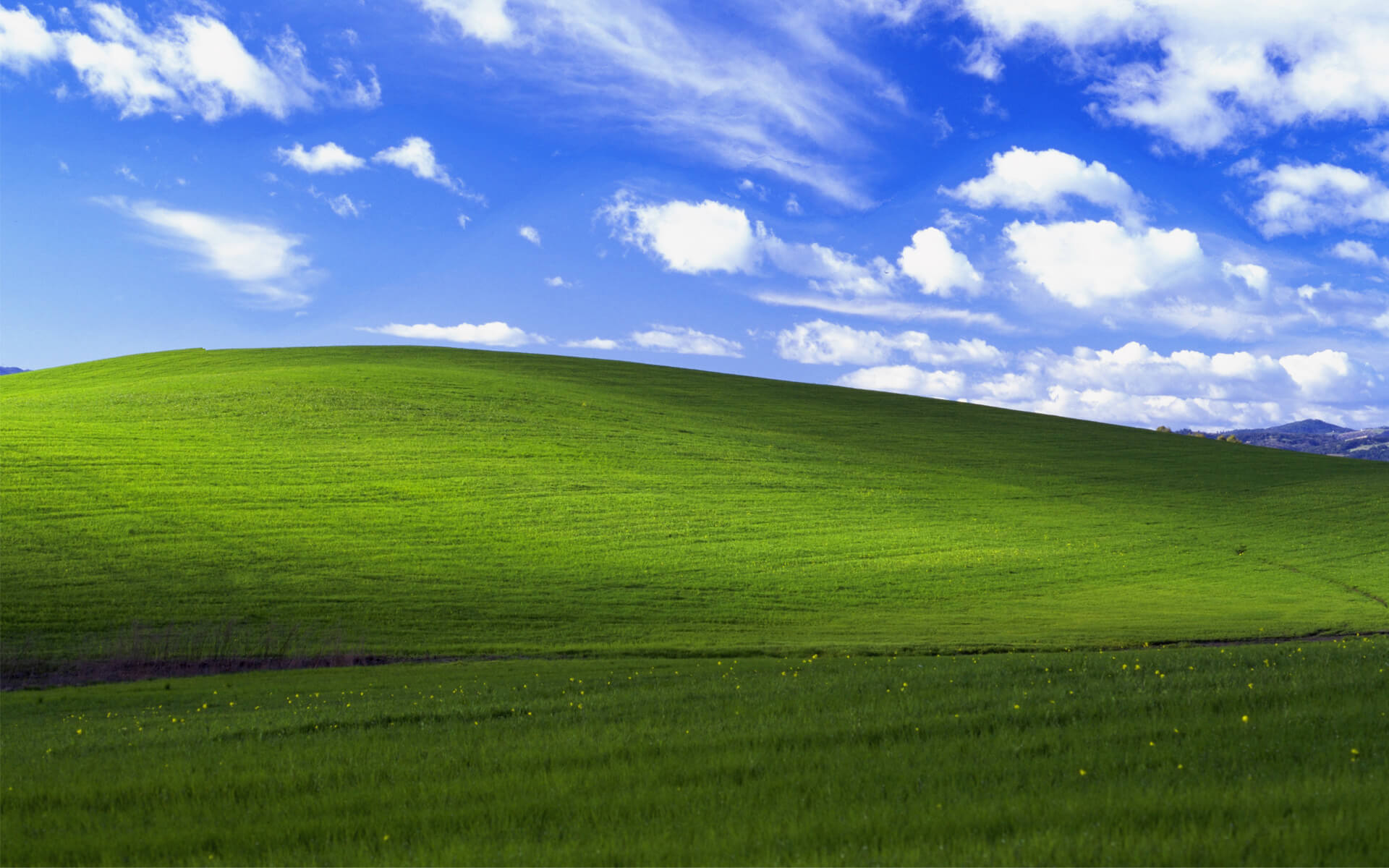windows xp bliss 4k